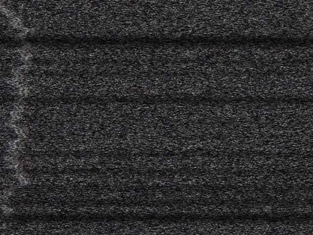 Vinyl octavia futa sfm
