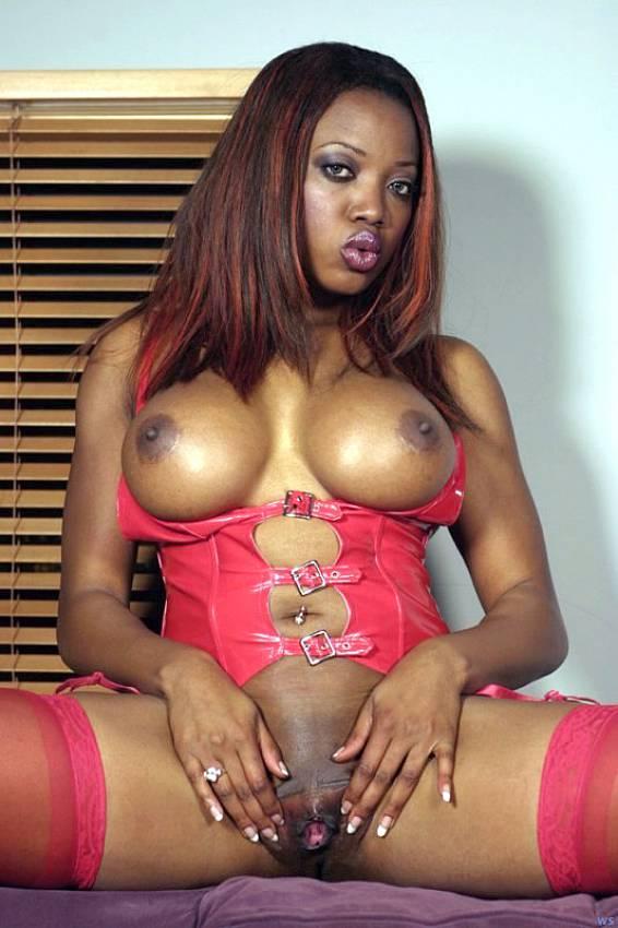 Stacy adams natural black tit bounce porn tube XXX